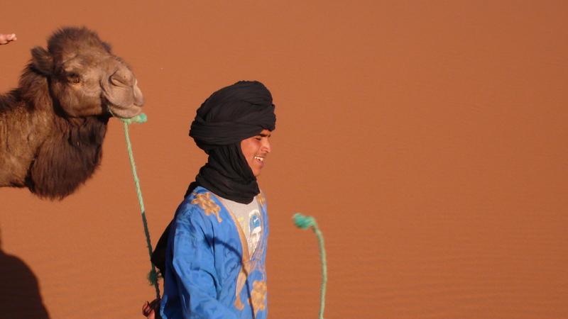 tawada nomad